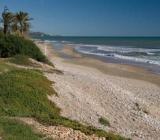 Foto: Playa Serradal
