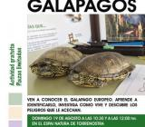 Tortugas galapago