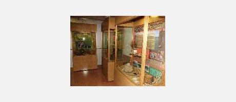 Img 2: MUSEUM DER ARTENVIELFALT
