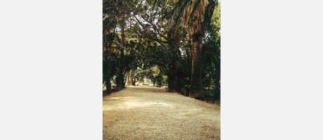 Img 1: Jardins Villa Marco