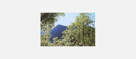Img 1: Naturpark Sierra de Espadan