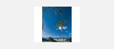Img 1: Playa Norte