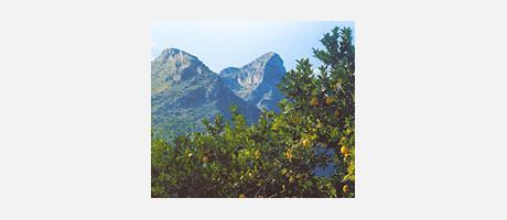 Img 1: Sierras de la Safor y de l'Almirall