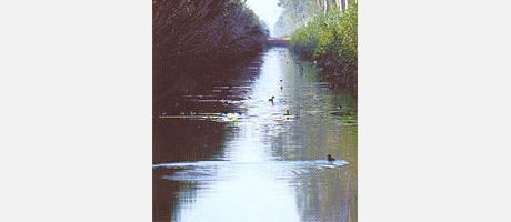 Img 1: El Parc Natural de les llacunes de la Mata i Torrevieja