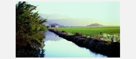 Img 1: La  Albufera Nature Park