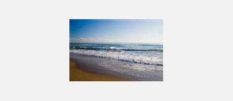 Img 1: Playa de la Alcúdia