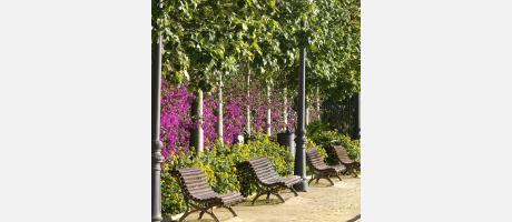 Img 1: Parque Municipal El Canyar de les Portelles