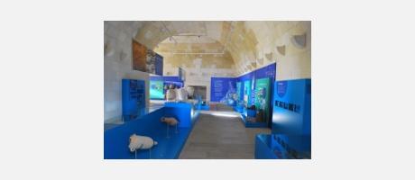 Img 1: Museo de la Ciudad de Alicante. MUSA