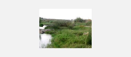 Img 1: Paisaje Protegido de la Desembocadura del Riu Millars