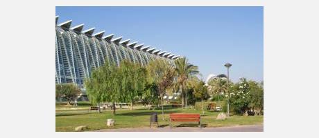 Imagen de los jardines del Cauce del Turia con el Museo de las Ciencias