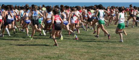 Img 2: XLVIII Campeonato de España de campo a través por clubes en Oropesa del Mar