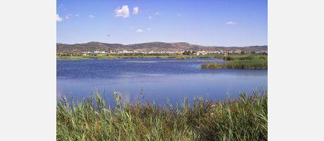 Img 1: Le printemps est arrivé sur la côte de Castellón