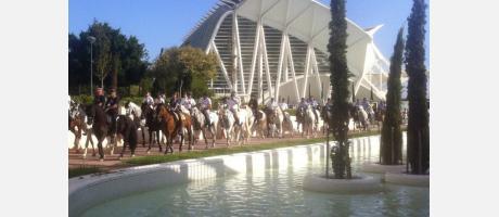 Paseo a caballo por el cauce del río Turia. valenciacaballo.es