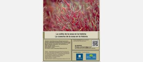 Charla: La importancia de la cosecha de la sosa en la historia