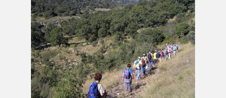 Barranc dels Horts