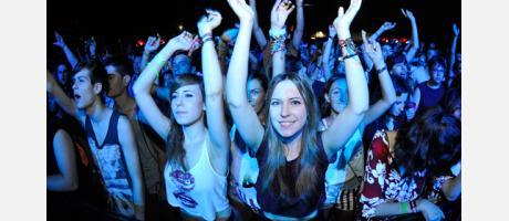 Jóvenes en un concierto
