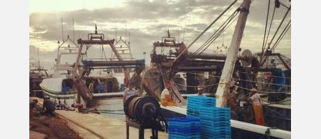 Trabajo en el puerto vilero