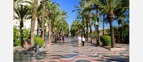 Ya en Alicante