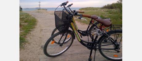bici ruta guiada con VisitAlbufera