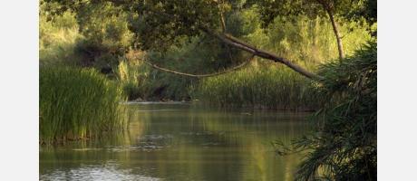 Parcs Naturals Comunitat Valenciana- Río Turia