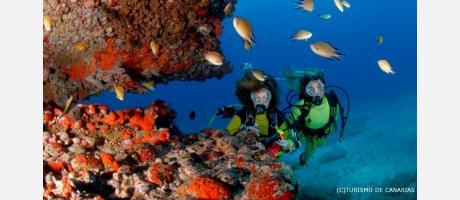 neteja submarina
