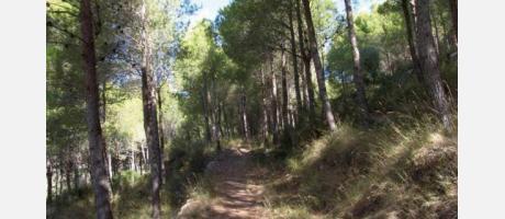 Alcalá de Xivert_Camp_Sol Park_Img3.jpg