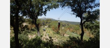 Tirolina con Trail Natura