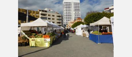 Fiesta de la Alcachofa de Benicarló 4