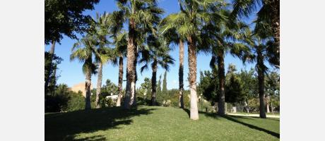 Parque El Canyar