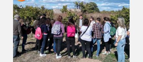 Escolares visitando el campo de Supernaranjas