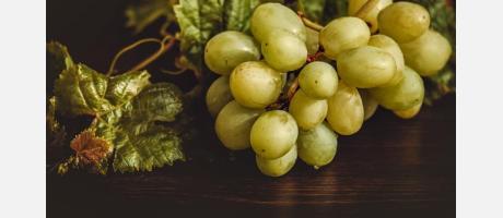 Uvas del Vinalopó