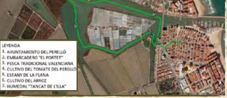 Ruta medioambiental Albufera
