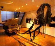 Museum des Salzs