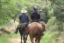 Castellón im Sattel: Maestrat Equestre