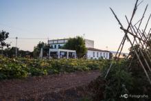 Horchatería Vida in Alboraya