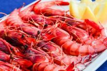 Mediterranean cuisine in Casa Jose Obelix de Gandia