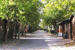 Sueca_Camping_LesPalmeres_Img1.jpg