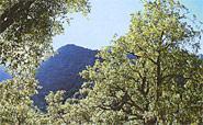 Naturpark Sierra de Espadan