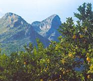 Sierras de la Safor y de l'Almirall