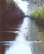 Naturpark Lagunas de La Mata und Torrevieja