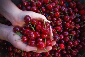 Cherry Festival in Caudiel