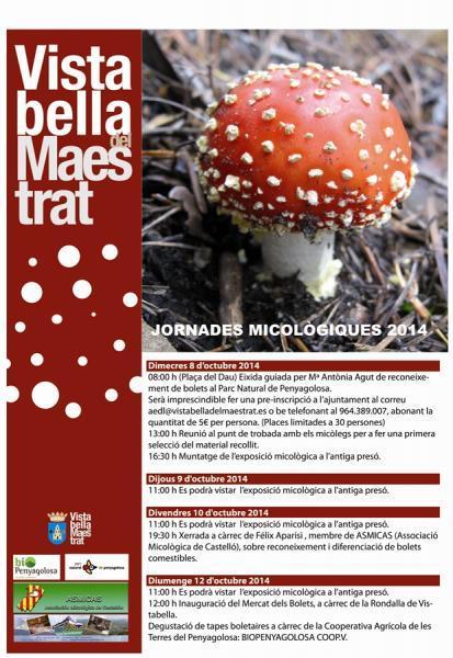 Jornadas  micológicas en Vistabella del Maestrazgo