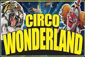 Gran Circo Wonderland Alicante 2014