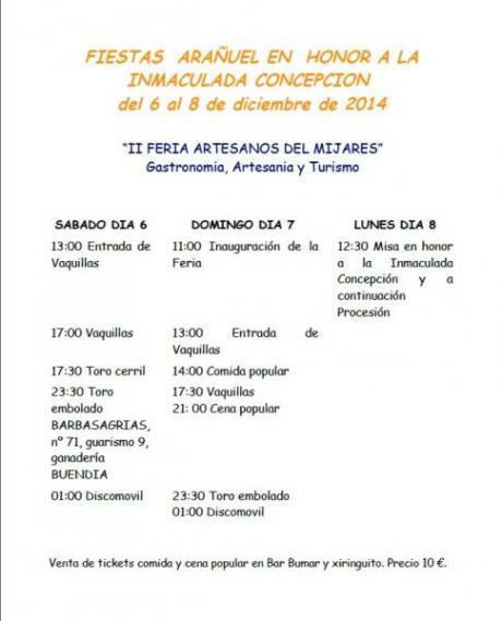Fiestas en honor a la Inmaculada Concepción 2014
