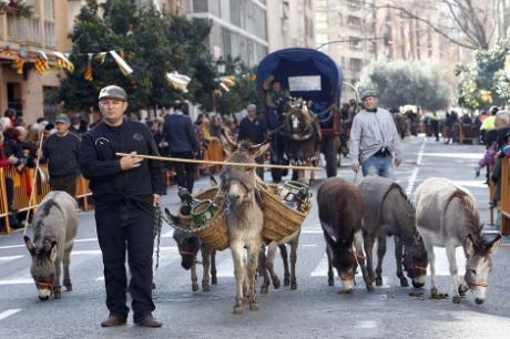 Festes al Carrer: Sant Antoni del Porquet