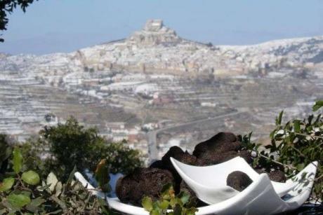 Trufas negras de Morella, una joya gastronómica invernal