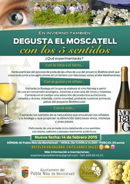 Moscatell with your 5 senses