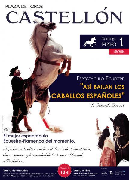 Espectáculo ecuestre- flamenco en Castellón