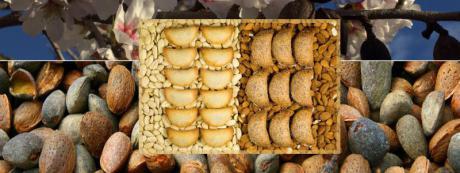 Mercat de la Terra en Xaló: La Almendra
