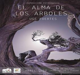Exposiciones Marzo y Abril Calp 2017